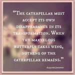 caterpillar transformation