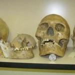 thousands of giant human skulls destroyed
